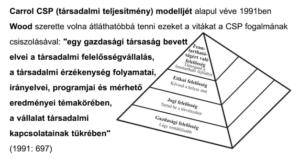 EMVFE - Carroll CSR piramis